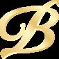 вижер логотип3
